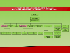 STRUKTUR ORGANISASI FARMASI update2
